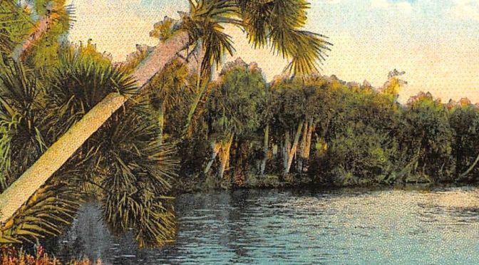 John D. MacDonald's Mission to Save Florida | CrimeReads