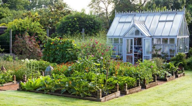Monty Don's brilliantly simple tip for building raised beds in the garden | Country
