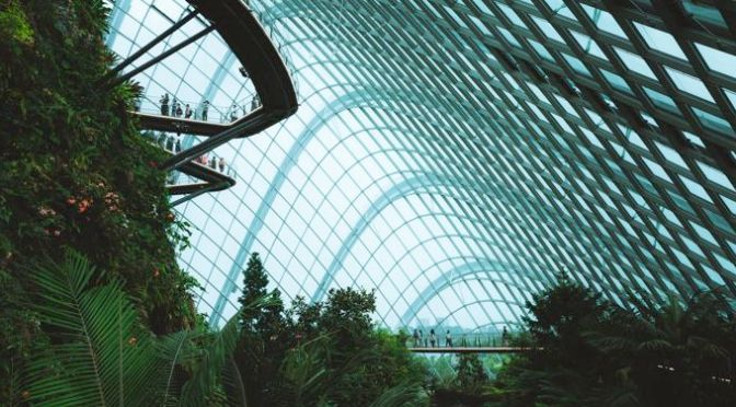 An Introduction to The Solarpunk Genre | Book Riot