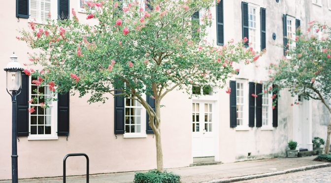 You Have To See These 15 Photos Of Charleston In Bloom – Explore Charleston Blog